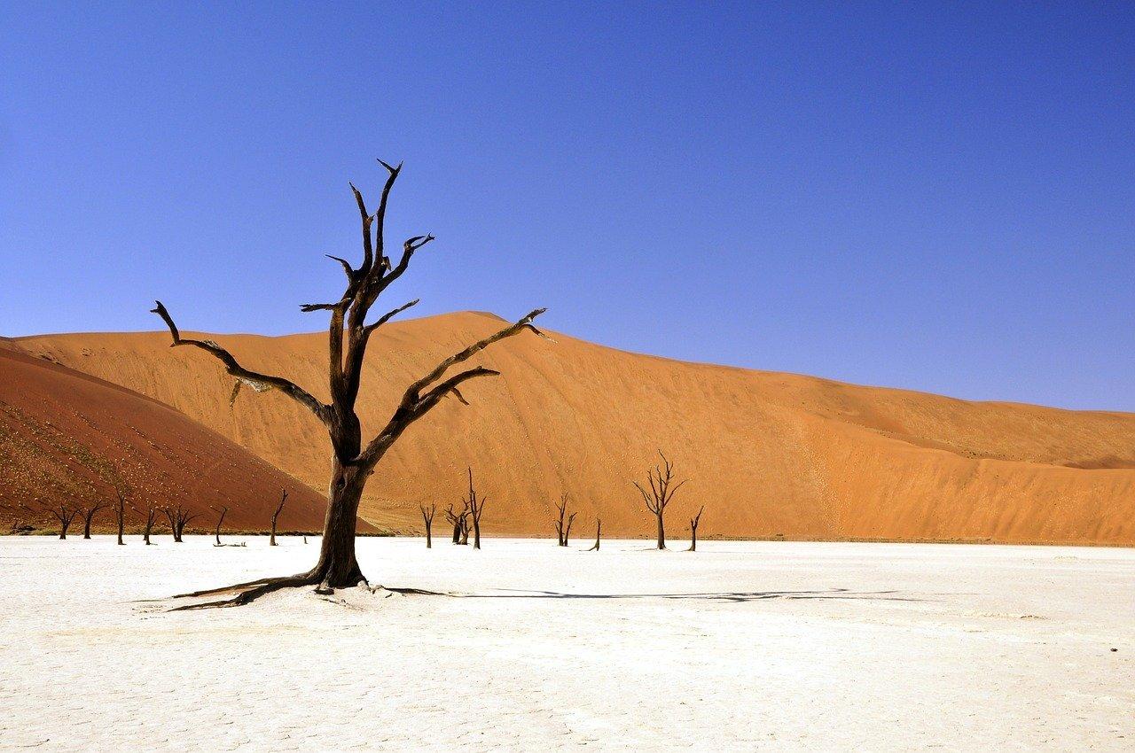 Cosa portare in un viaggio in Namibia – Packing list