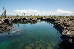 tunnels lava marini